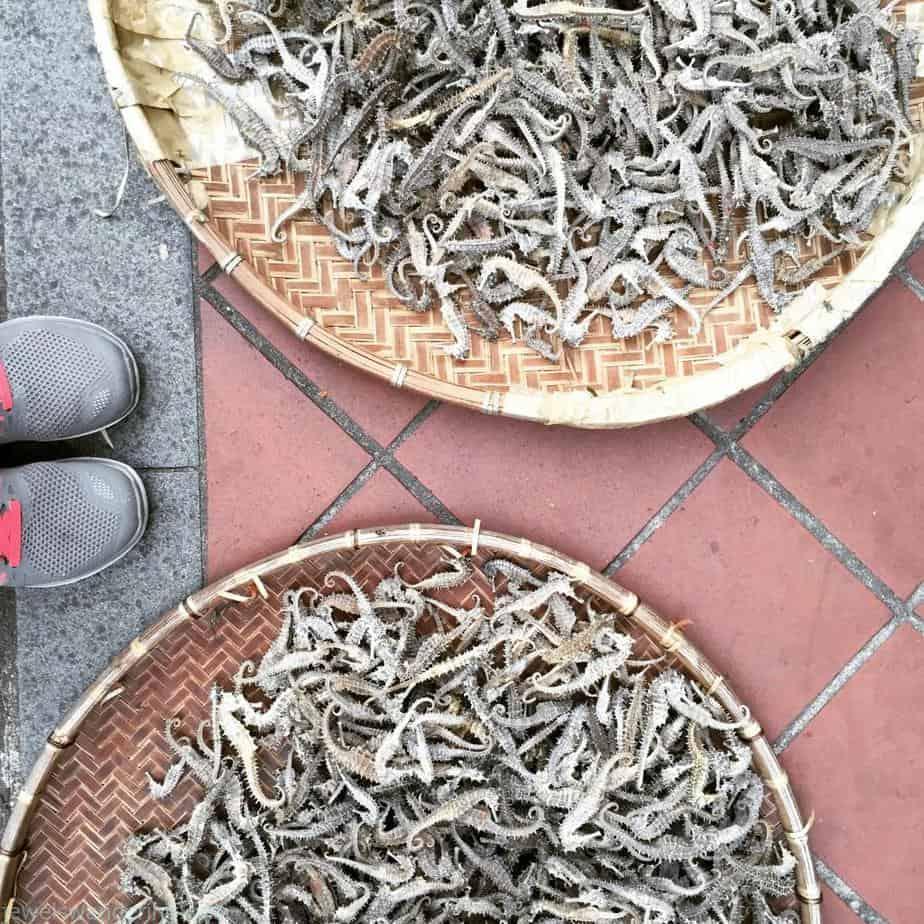 Seahorses, Chinese Medicine