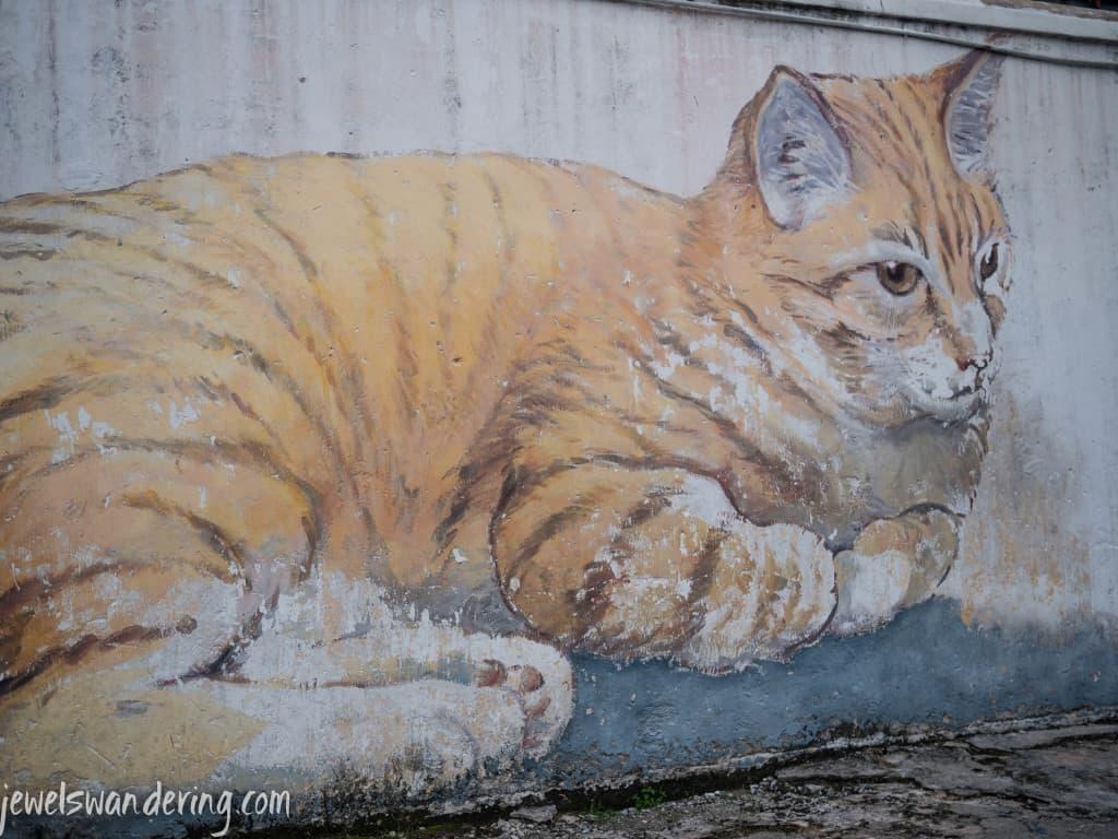 Cats, Penang, Malaysia