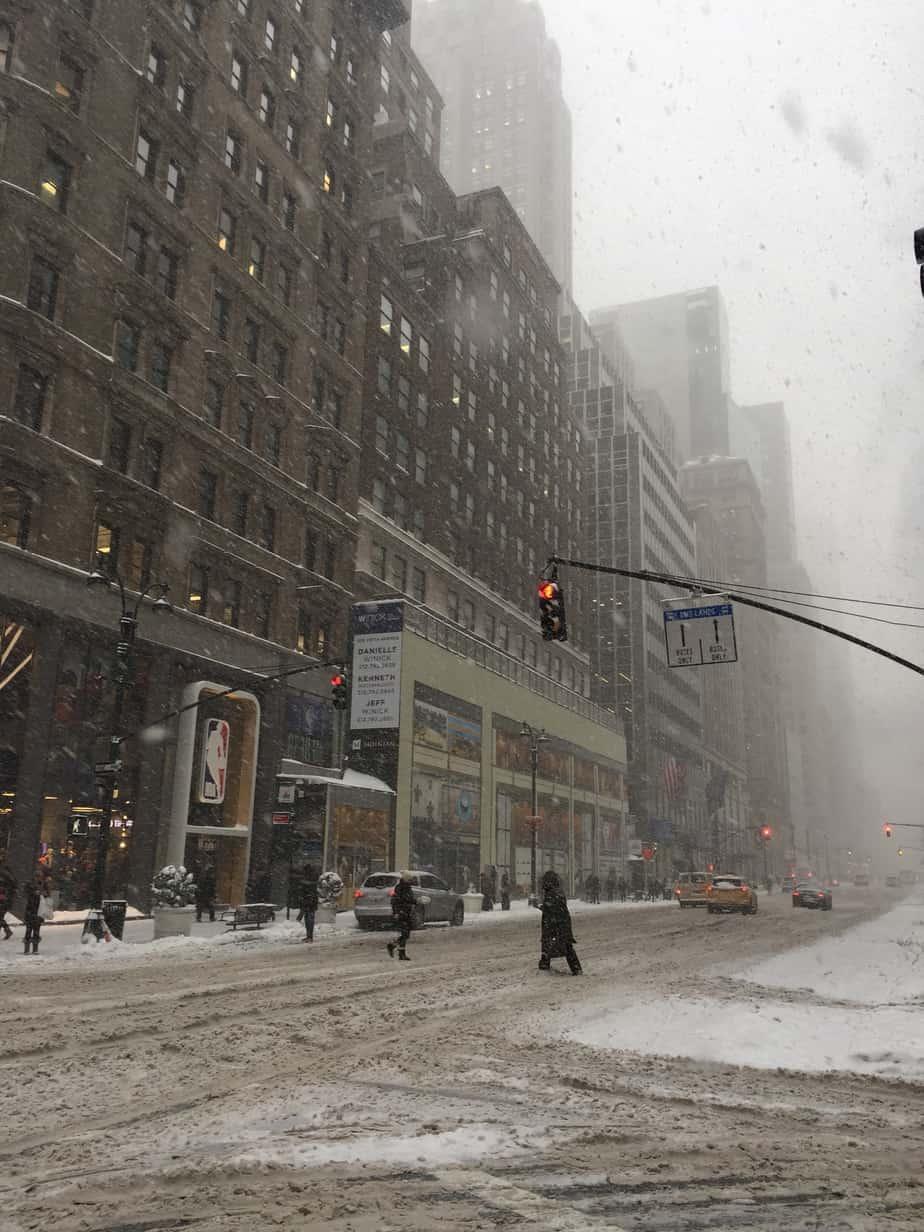 Snowy NYC Days