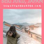 Mountains of Seki Juku