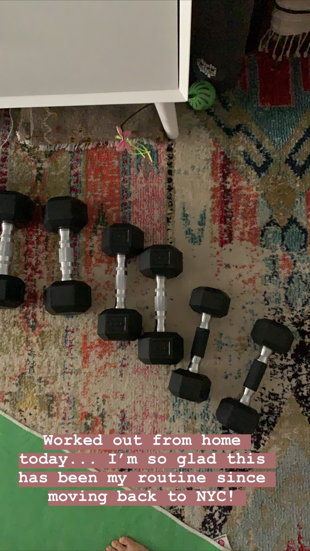 dumbbells in a row on a multi colored rug