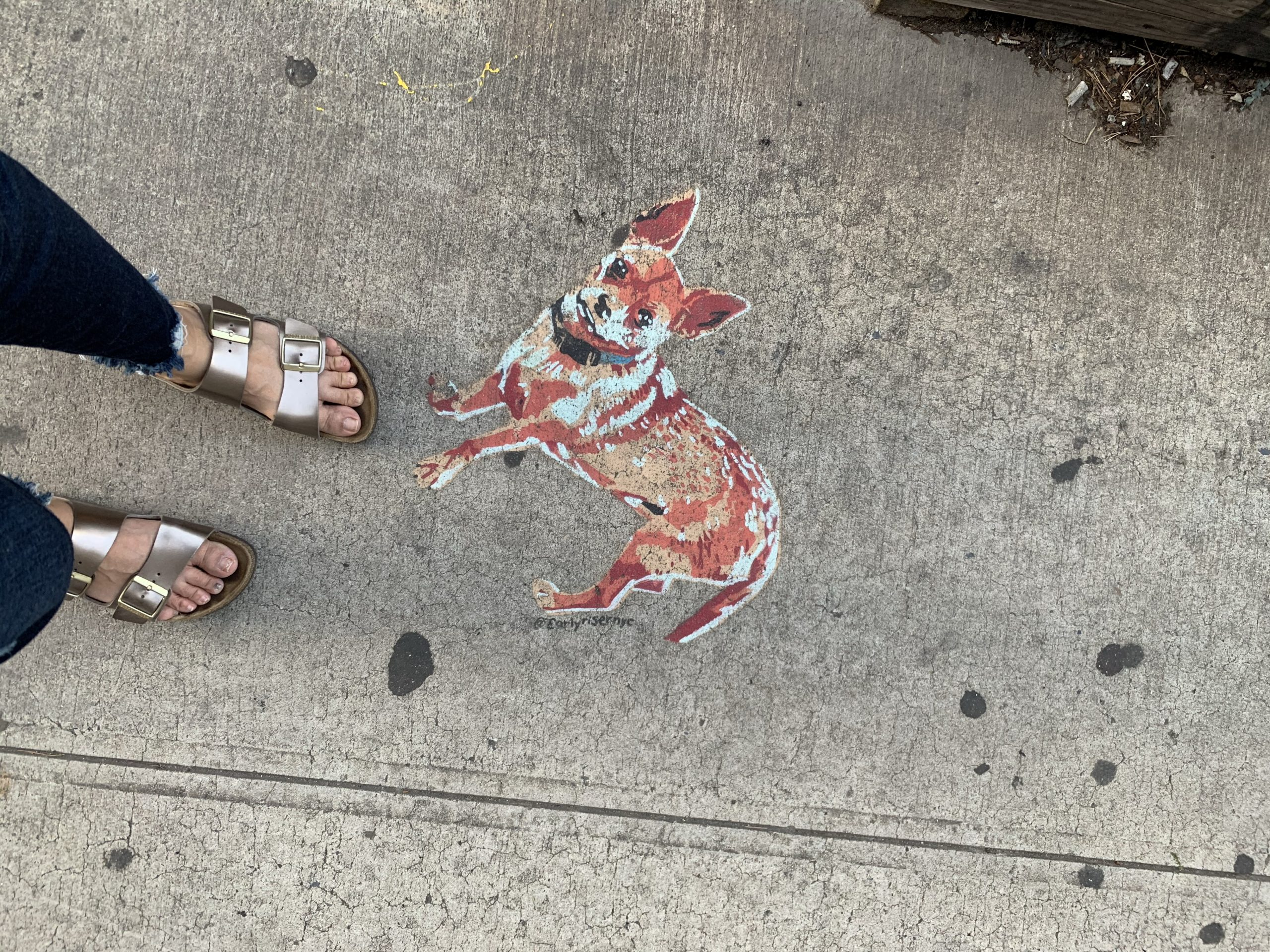 Spray painted fox on the sidewalk